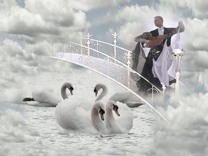 В белом танце платье кружится