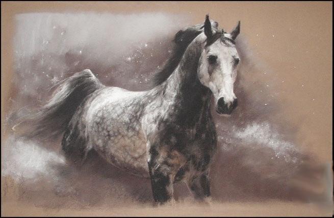 024 серый в яблоках конь розенбаум
