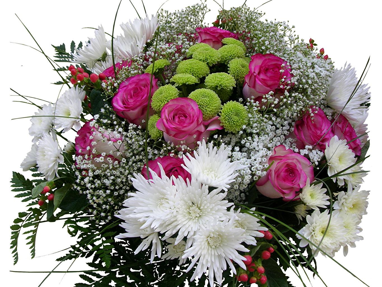 Картинки с хризантемами с днем рождения